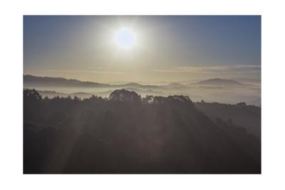 Oakland Hills, Foggy Sunrise by Henri Silberman