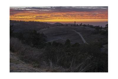 Oakland Hills Orange Surise 3 by Henri Silberman