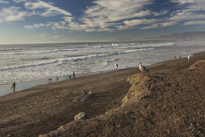 Ocean Beach Afternoon by Henri Silberman
