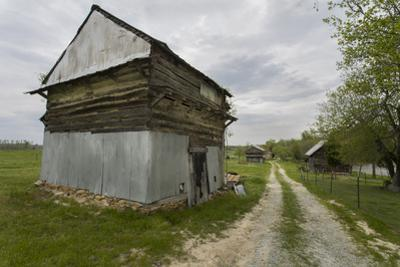 Old Log Tobacco Barn and Dirt Road