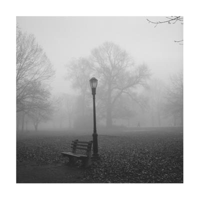 Park Bench, Lamp Post in Fog