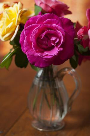 Pink Rose in a Venetian Vase 2 (Still Life) by Henri Silberman