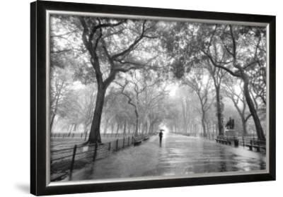 Poet's Walk, Central Park, New York City by Henri Silberman