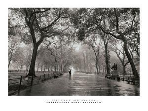 Poet's Walk by Henri Silberman