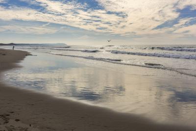 Point Reyes Kehoe Beach 1