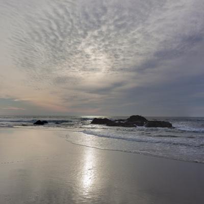 Point Reyes Kehoe Beach 2 by Henri Silberman
