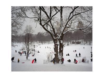 Prospect Park in Snow
