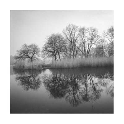 Prospect Park Lake In Morning - Brooklyn Landscape by Henri Silberman