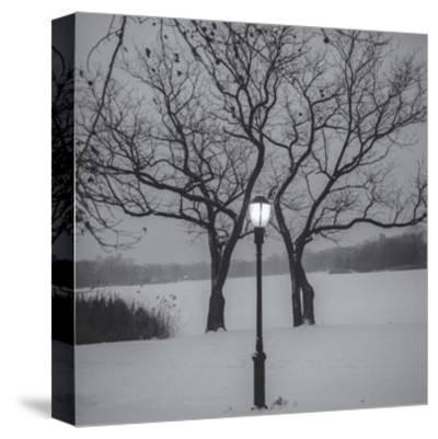Prospect Park Lamp Post in Snow