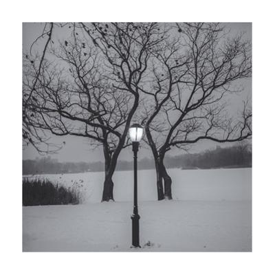 Prospect Park Lamp Post in Snow by Henri Silberman