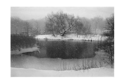 Prospect Park Snow, Upper Pool by Henri Silberman