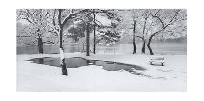 Prospect Park Snowy Bench Panorama by Henri Silberman