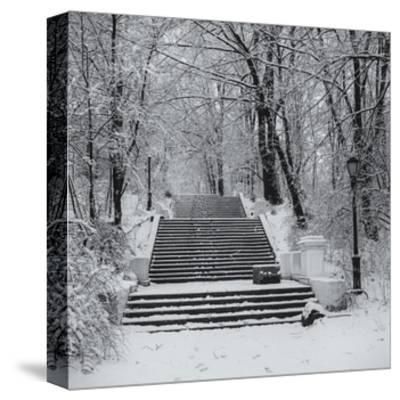 Prospect Park Snowy Staircase