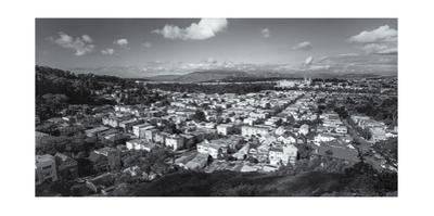 San Francisco Tank Hill Panorama by Henri Silberman
