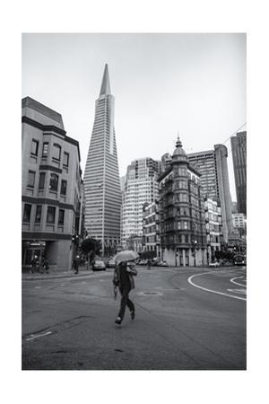 San Francisco Transamerica Building Umbrella Runner by Henri Silberman