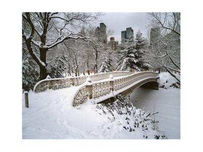 Snow Covered Bridge Central Park