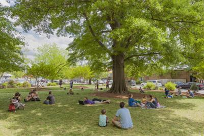 Spring on the Grass under Trees by Henri Silberman