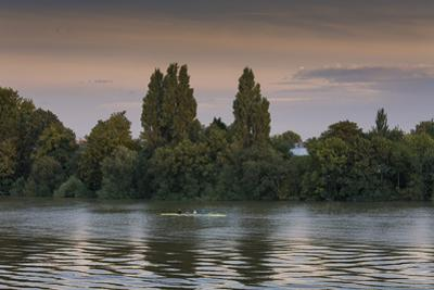 Sunset Skulling on Thames River, London (Exercise, Water Recreation, Hammersmith) by Henri Silberman