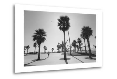 Venice Beach Palm Trees - Los Angeles Beaches by Henri Silberman