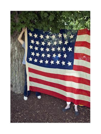 Vintage American Flag Fourth of July by Henri Silberman