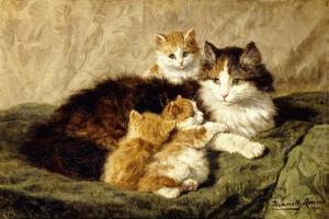Contentment, 1900 by Henriette Ronner-Knip