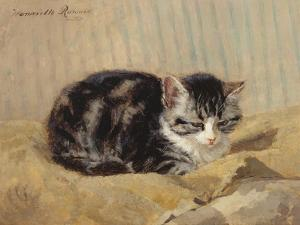 The Tabby by Henriette Ronner-Knip