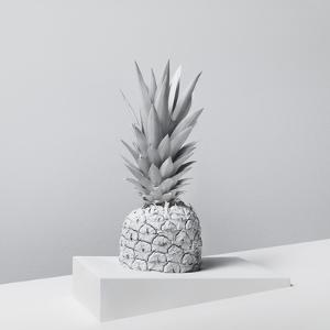 White Nature by Henrik Sorensen