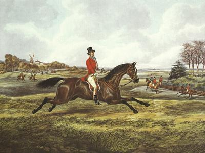 The English Hunt V
