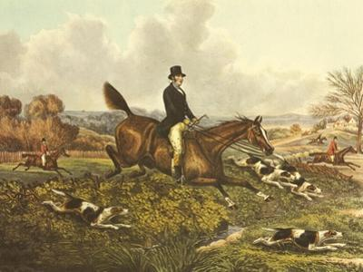 The English Hunt VII