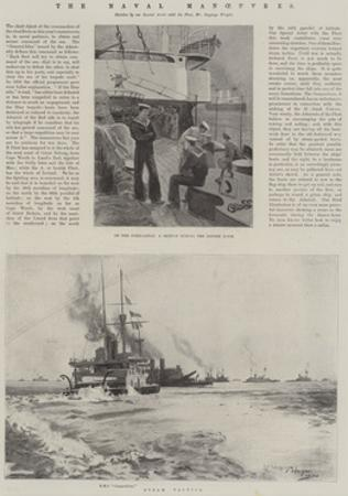 The Naval Manoeuvres by Henry Charles Seppings Wright