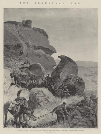The Transvaal War