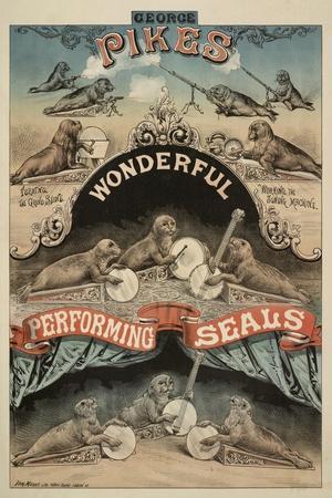 George Pike's Performing Seals
