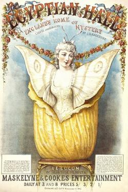 The Cocoon Illusion Presented by Buatier De Kolta at the Egyptian Hall by Henry Evanion