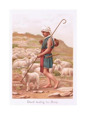 David Tending His Sheep