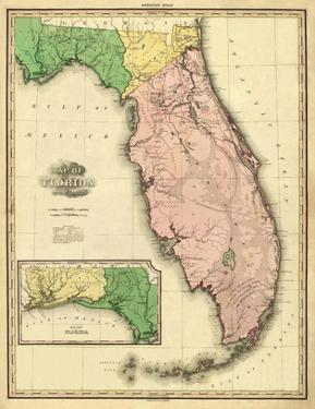Florida, c.1823 by Henry S. Tanner