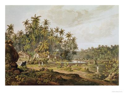 View Near Point du Galle, Ceylon, Engraved by Daniel Havell