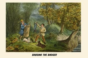 Bagging the Badger by Henry Thomas Alken