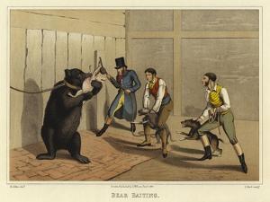 Bear Baiting by Henry Thomas Alken