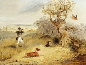 Pheasant Shooting by Henry Thomas Alken