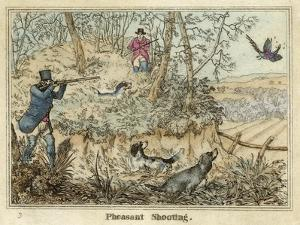 Pheasant, Two Men and Their Dogs Shoot from a Clearing by Henry Thomas Alken