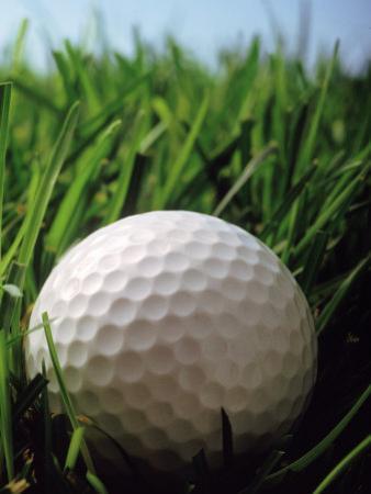 Close-up of Golf Ball in Grass