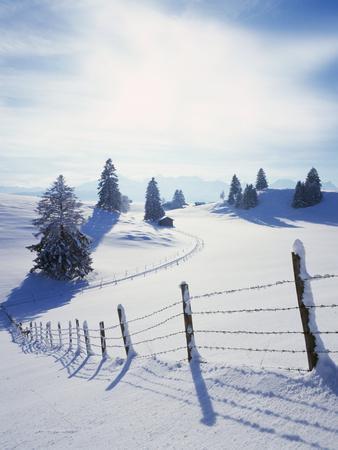Germany, Bavaria, AllgŠu, Snow Scenery, Back Light, Alps, Mountains, Loneliness, Mountains, Winter