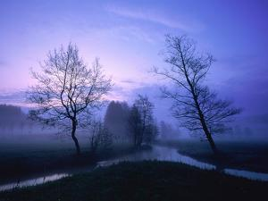 Misty River and Forest at Dusk, Baden-Wuerttemberg, Germany by Herbert Kehrer