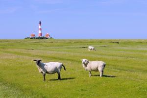 Westerhever Lighthouse, North Sea, Schleswig-Holstein, Westerheversand, Wadden Sea by Herbert Kehrer