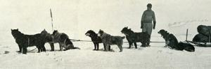 'Dogs with Stores About to Leave Hut Point', c1911, (1913) by Herbert Ponting