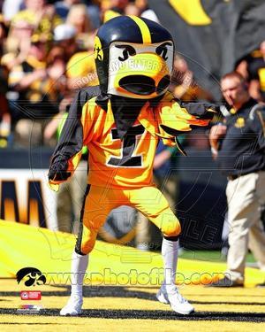 Herky the Hawk, the University of Iowa Hawkeyes Mascot