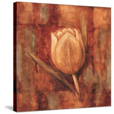White Tulipans II