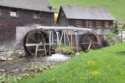 https://imgc.allpostersimages.com/img/posters/hexenlochmuehle-close-furtwangen-black-forest-baden-wurttemberg-germany_u-L-Q1EY4ZV0.jpg?artPerspective=n