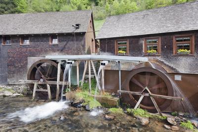 https://imgc.allpostersimages.com/img/posters/hexenlochmuehle-mill-near-furtwangen-in-spring-black-forest-baden-wurttemberg-germany_u-L-PWFMRU0.jpg?p=0