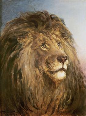 A Lion's Head by Heywood Hardy